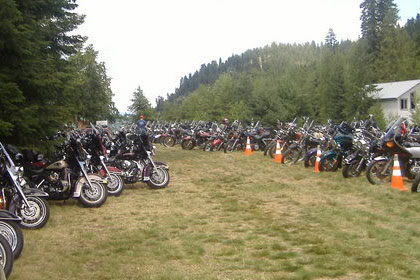 Long lines of motorcycles fill field of grass surrounded by trees.