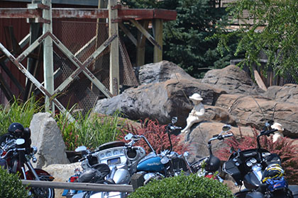 Parked motorcycles.