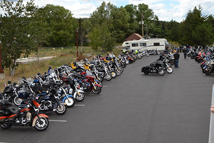 Three rows of motorcycles in the parking lot.